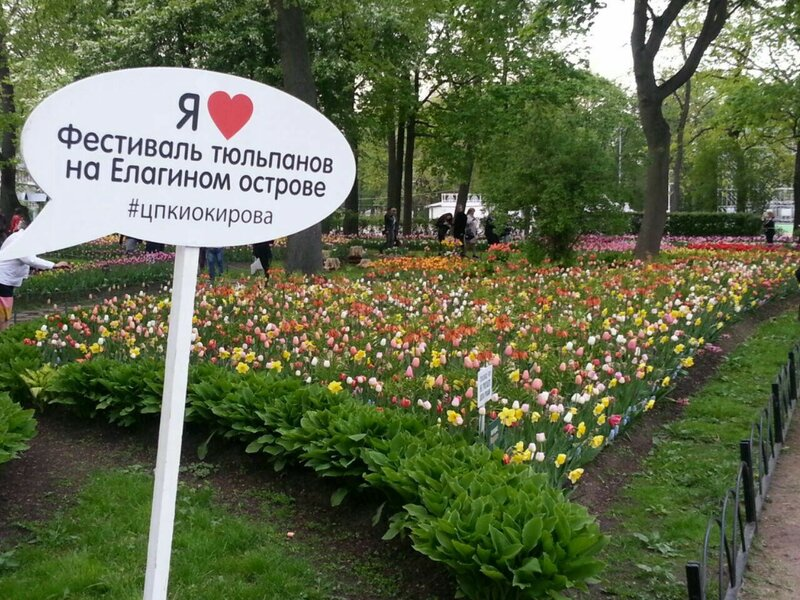 Фестиваль тюльпанов на Елагином острове #цпкиокирова