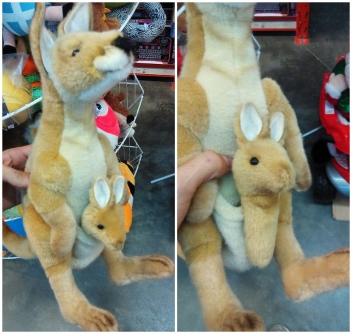 Что ж, лапки малышу кенгуру можно пришить. А вот мозг дизайнеру — вряд ли.