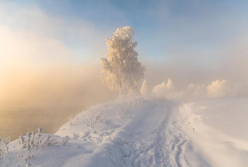 Фото: Сергей Аникин