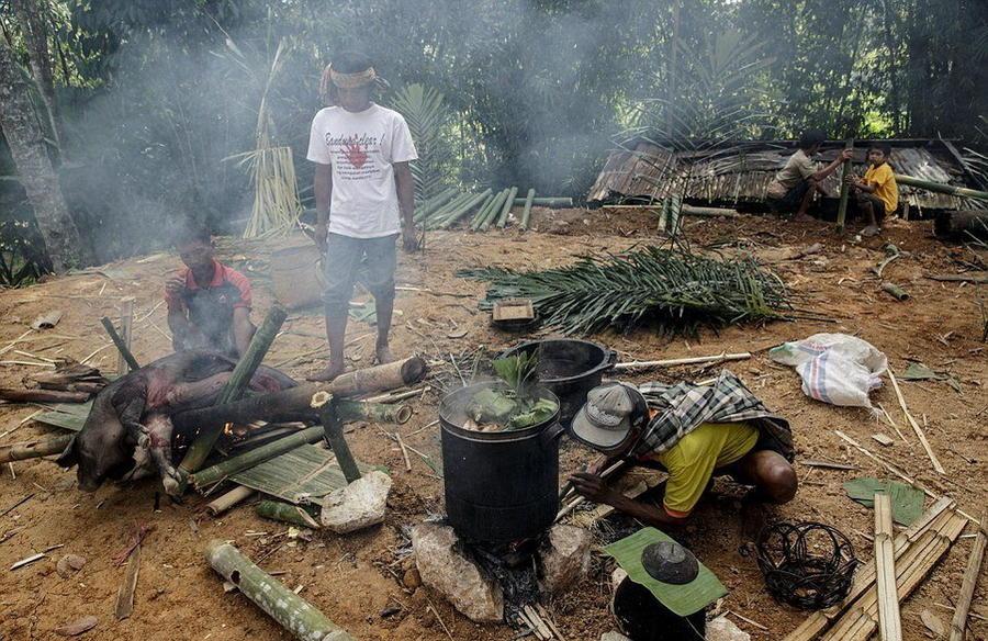 11. Традиционное приготовление кабана на бамбуковых палках.