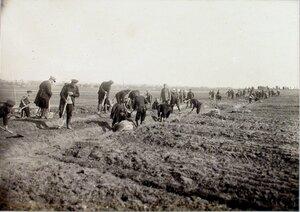 Солдаты за устройством земляного полотна во время постройки полевой конной железной дороги Олешице-Тарноград.