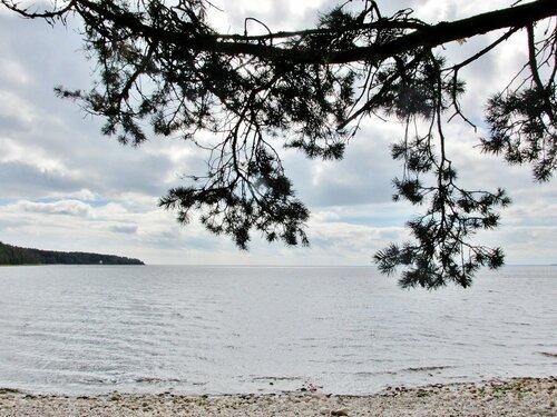 На берегу Ладожского озера