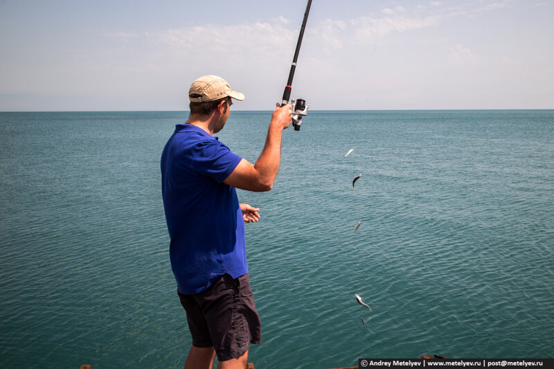 рыбалка в Пицунде