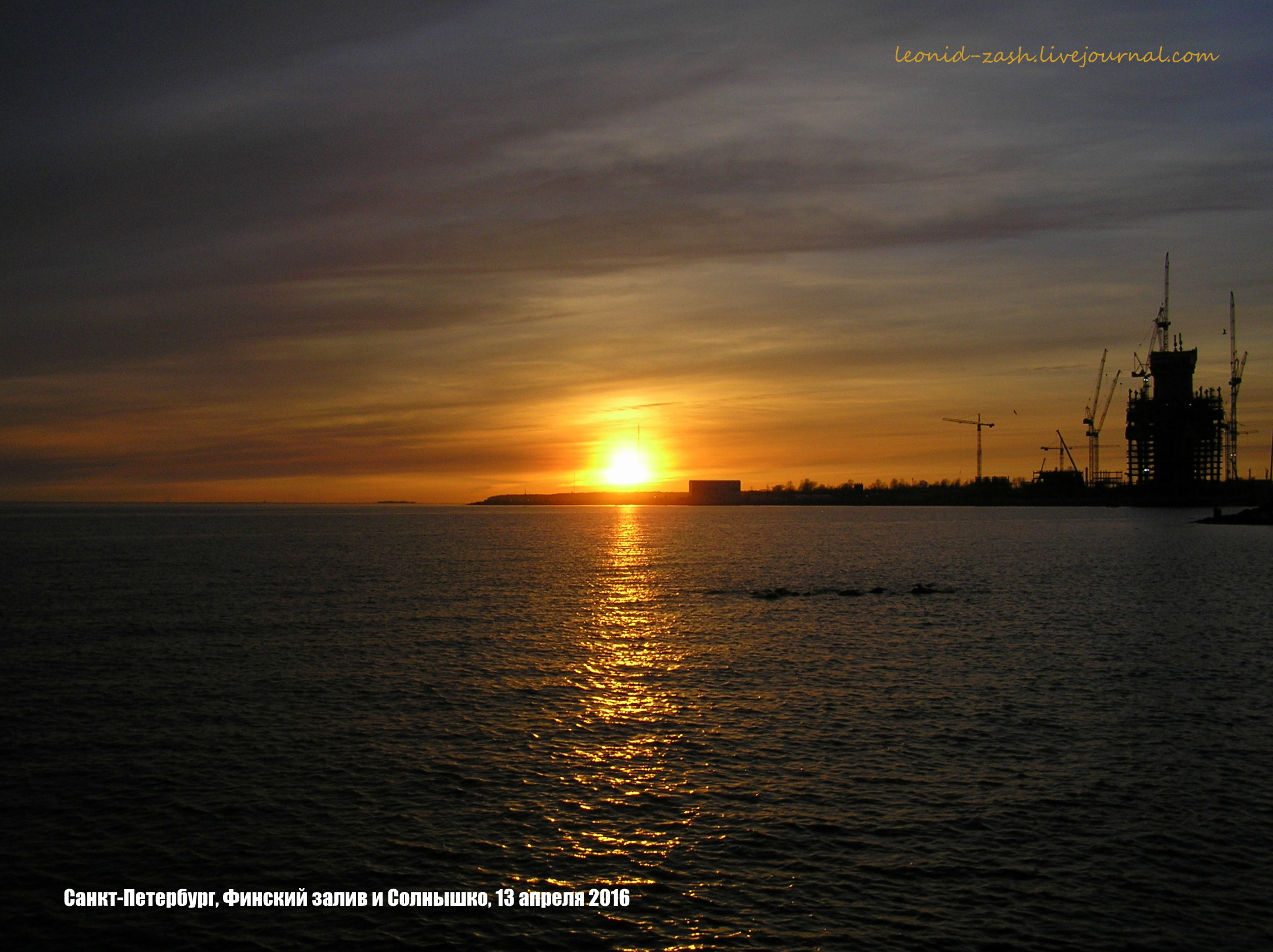 Финский залив 52.JPG