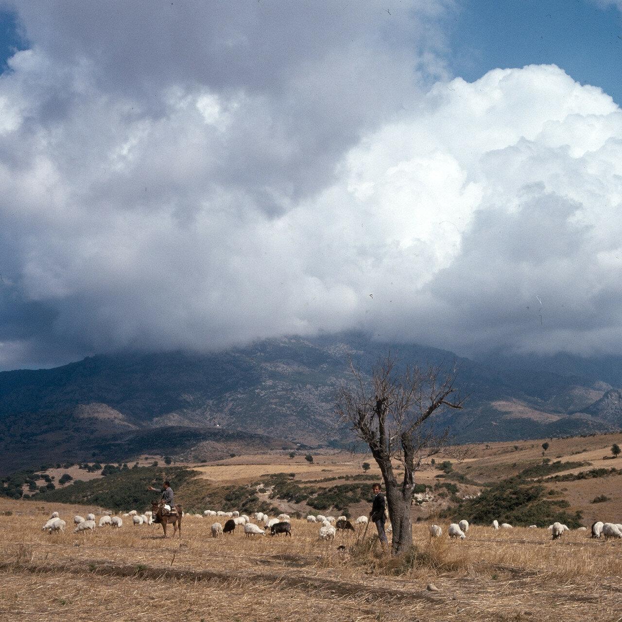 1972. Самофракия. Пастухи возле Лакомы