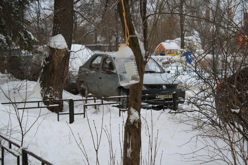 Прогулка после снегопада 138.JPG