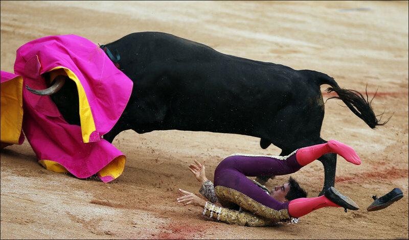 Традиционные забеги с быками на фиесте Сан Фермин