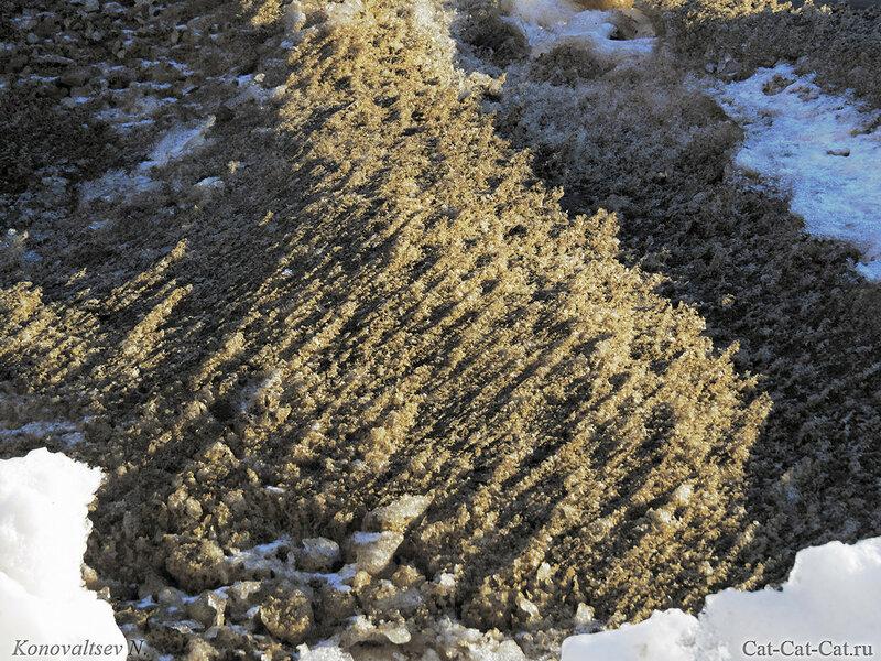 Подтаявший снег на обочине