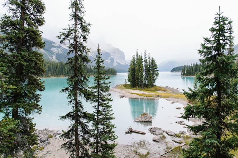 Природные и пейзажные фотографии Финна Билса (Finn Beales)