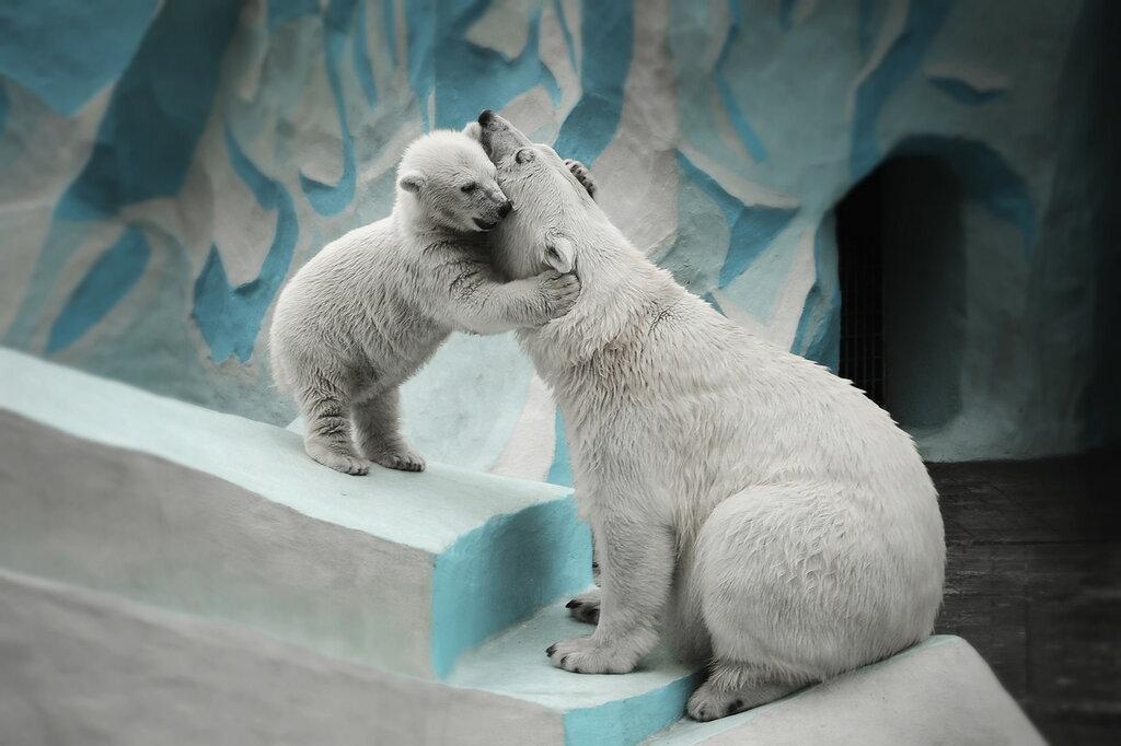 мамочку люблю ☺