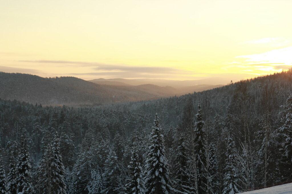 Лес, вид с финиша первой трассы Евразии