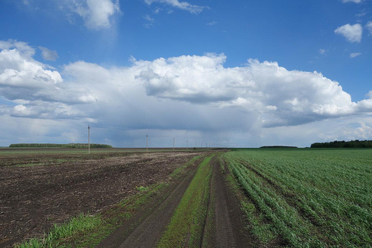 а это уже поля Саратовской области