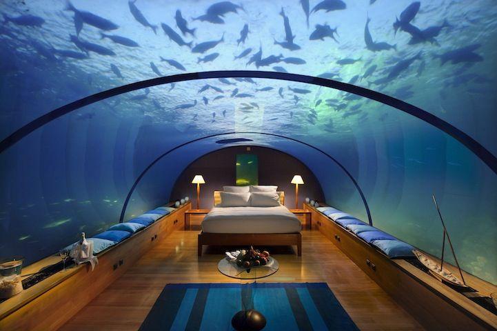 Ресторан и спальня под водой (8 фото)