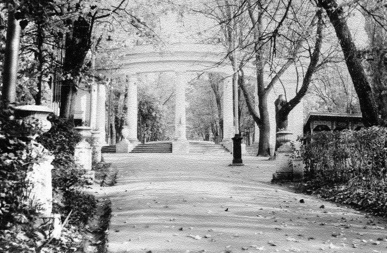 Центральная аллея парка в Житомире