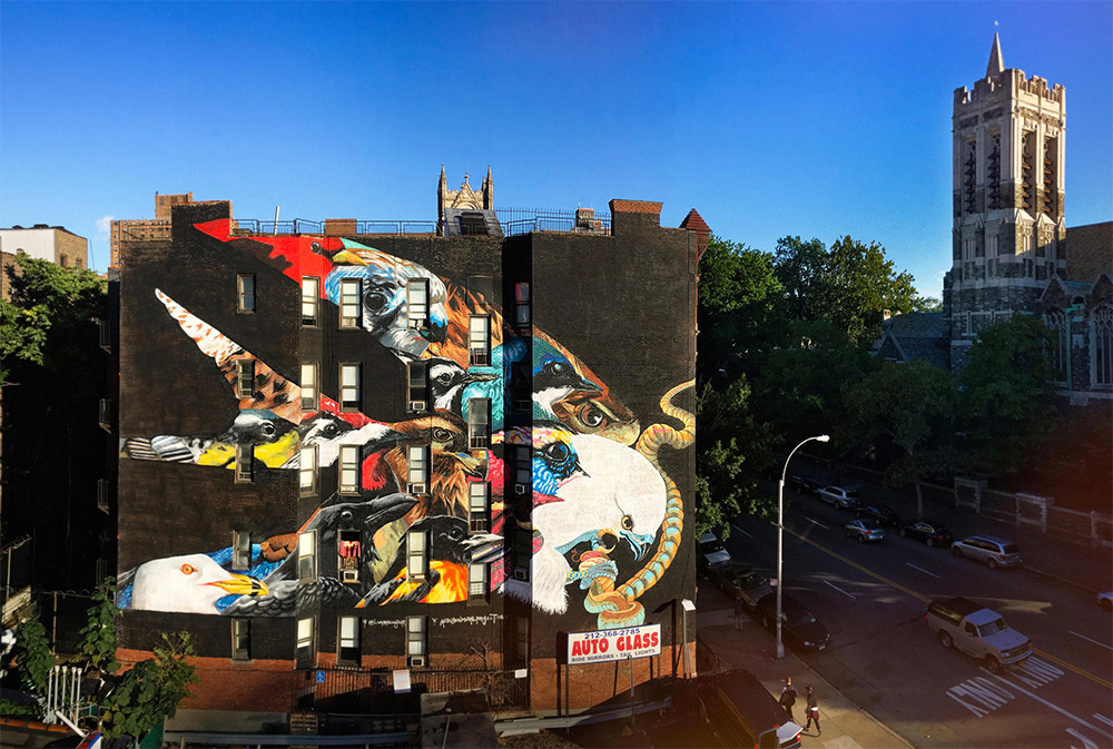 The Swallow-tailed Kite mural contains 12 other climate-threatened species. The church tower to the