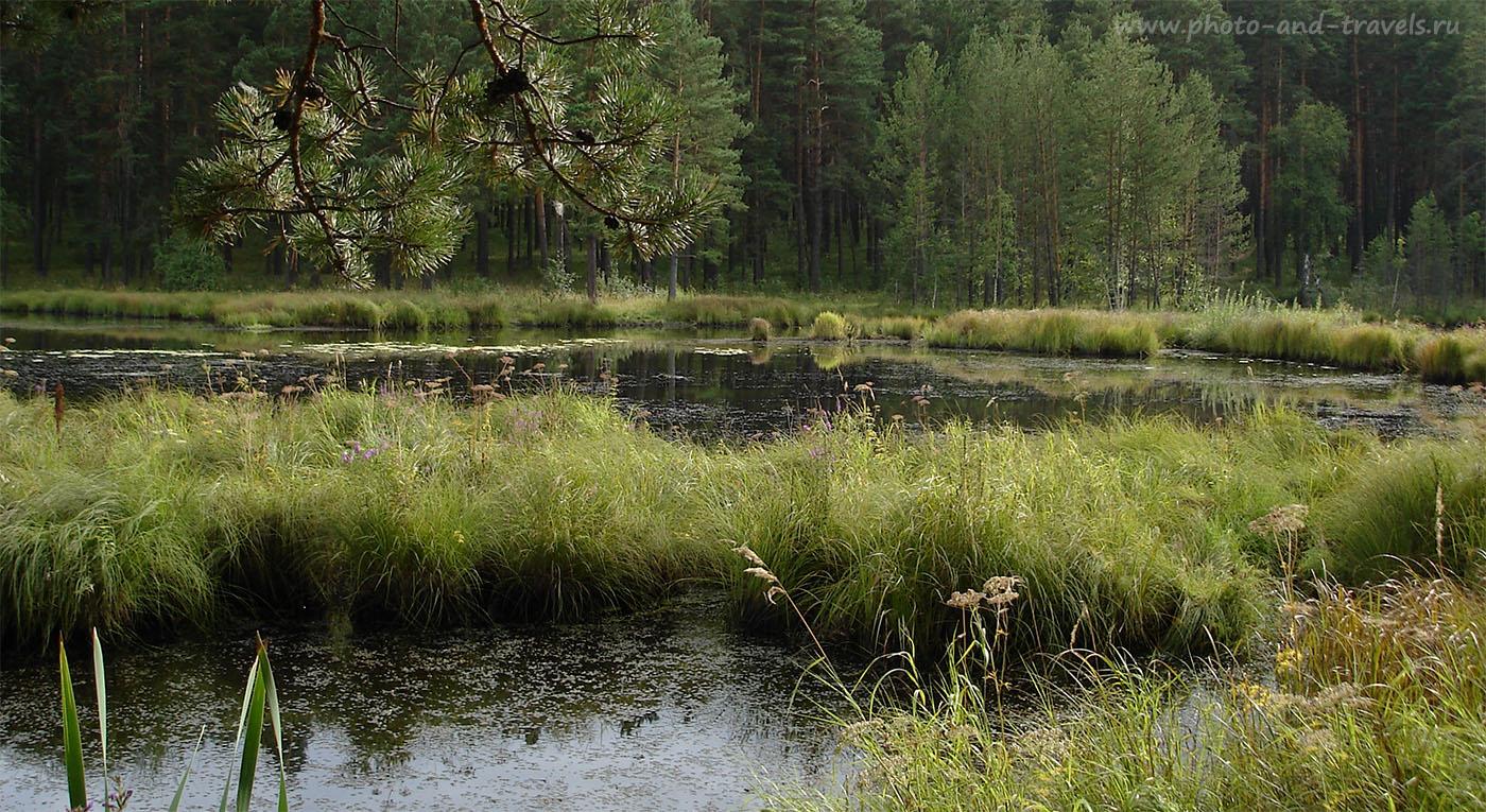 18. Когда проедете эту речку, увидите футбольное поле и стоянку для посетителей парка Бажовские места. До озера Тальков камень нужно идти пешком.