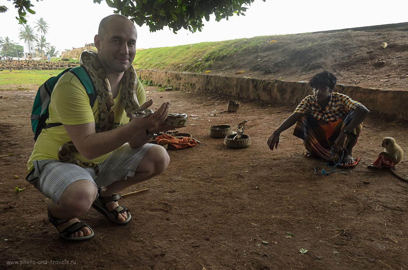 Фотография 10. Белый заклинатель змей на Шри-Ланке. Самостоятельная экскурсия Форт Галле. Отзывы туристов об отдыхе в мае.