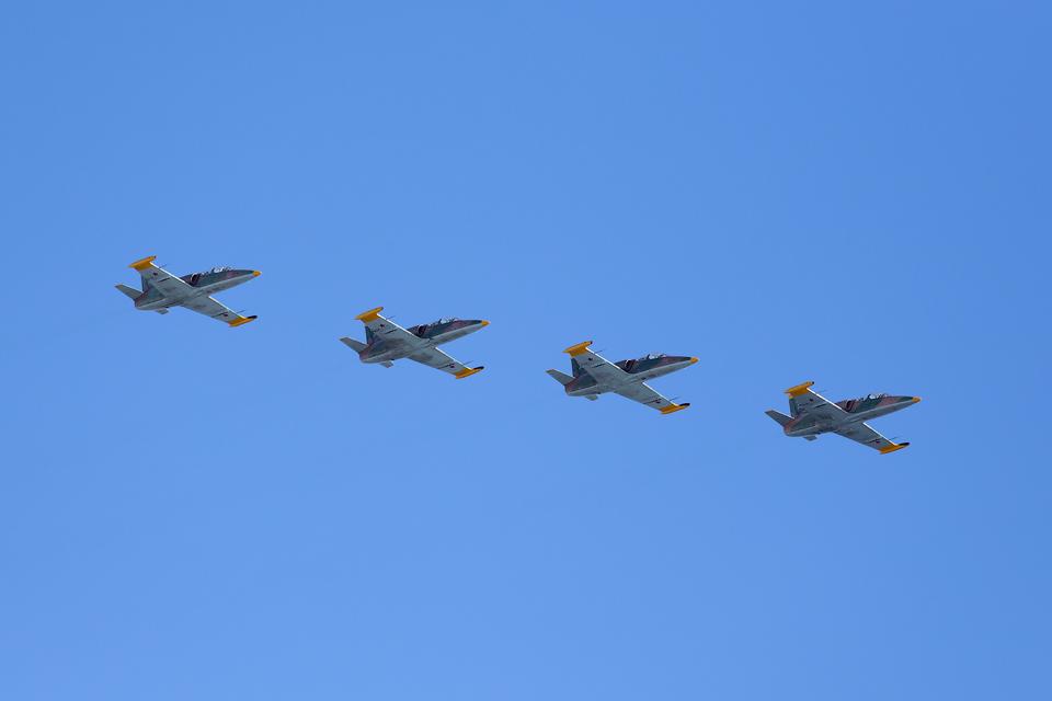 L-39 (Albatros) — учебно-боевой самолет