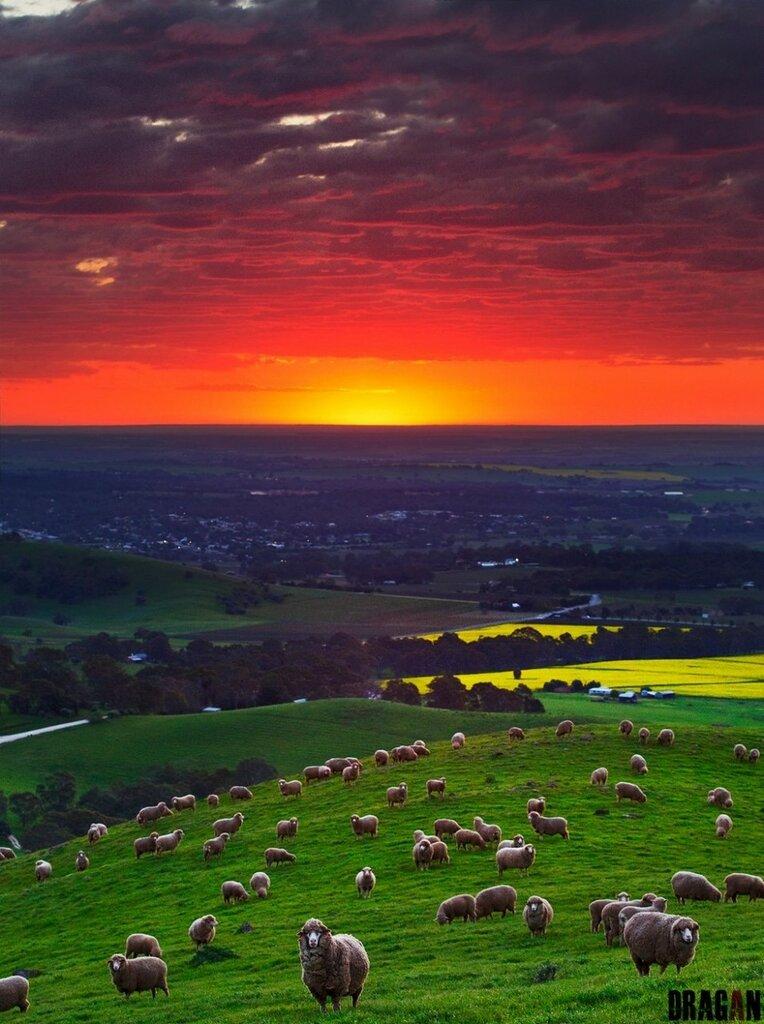 Закат над долиной Баросса