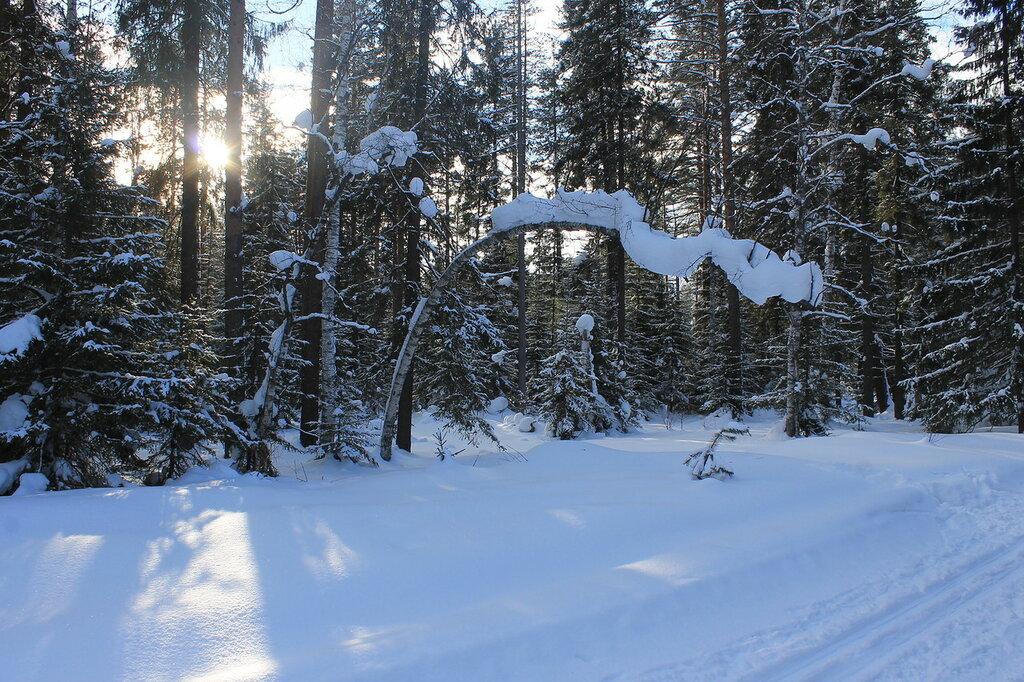 Лыжный поход к знаку.