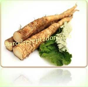 Лечение суставов корнем лопуха