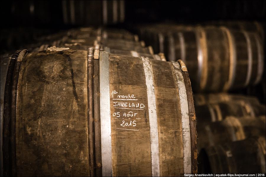 Hennessy Paradise / Подвалы Hennessy