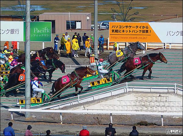 Ипподромные гиганты Японии