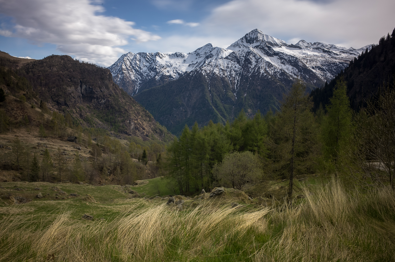 Трекинг около Alpe Ceggio