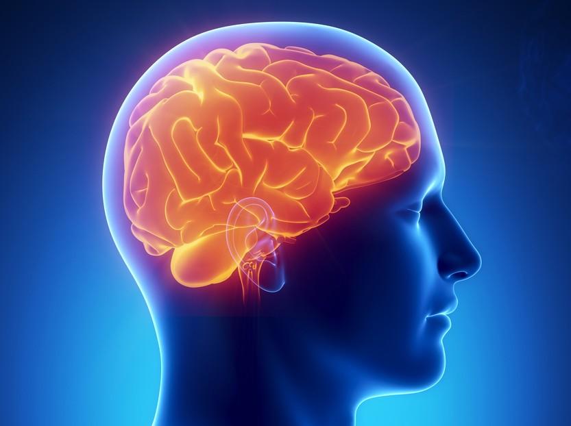 Учёные просят людей с психологическими недугами пожертвовать мозг наисследования