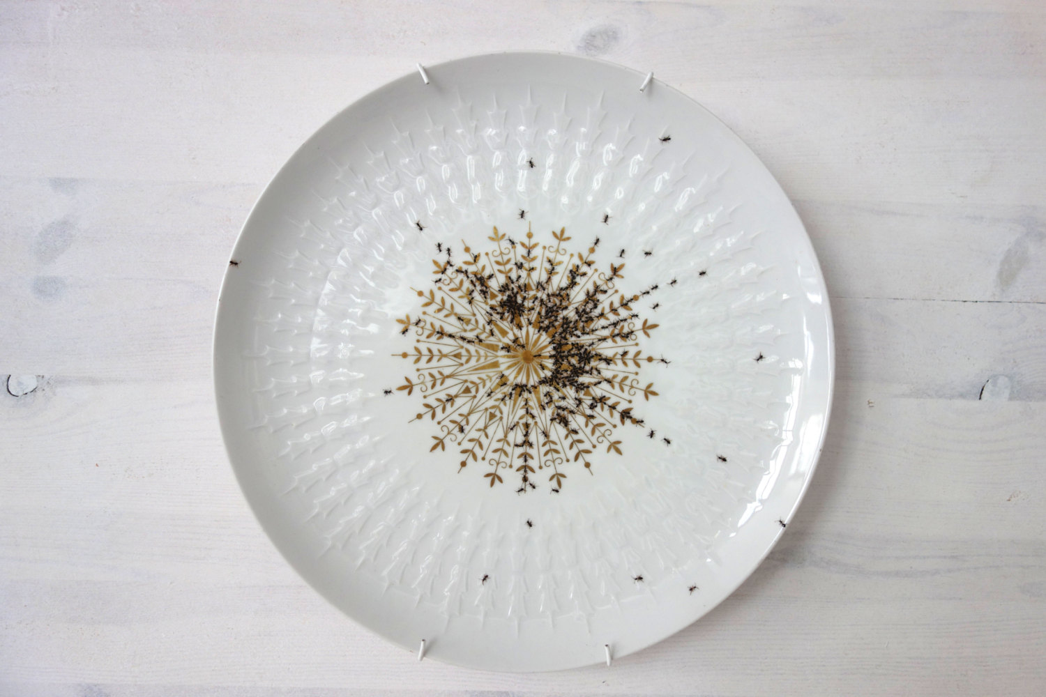 Vintage Porcelain Dishes Covered in Hordes of Hand-Painted Ants