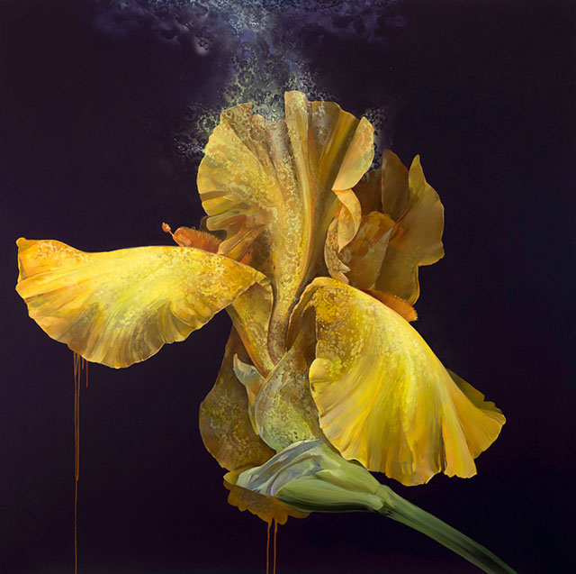 Brilliant Flowers Paintings by Carmelo Blandino