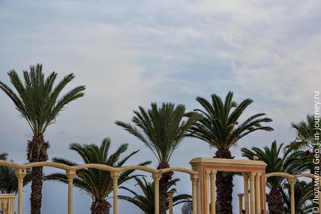 тунис погода в сентябре