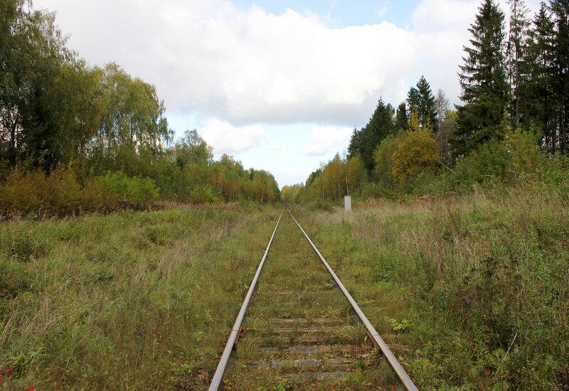 Переезд у платформы Ивановские казармы, вид на Весьегонск