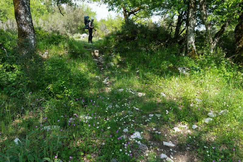пешеходная тропа в деревню Вица (Vitsa), Загория, Греция