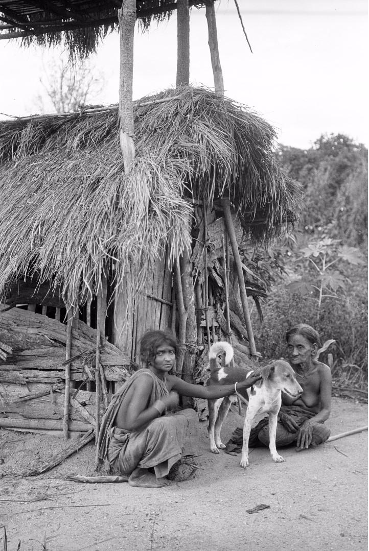 350. Мадугалла. Женщина с матерью и собакой возле хижины