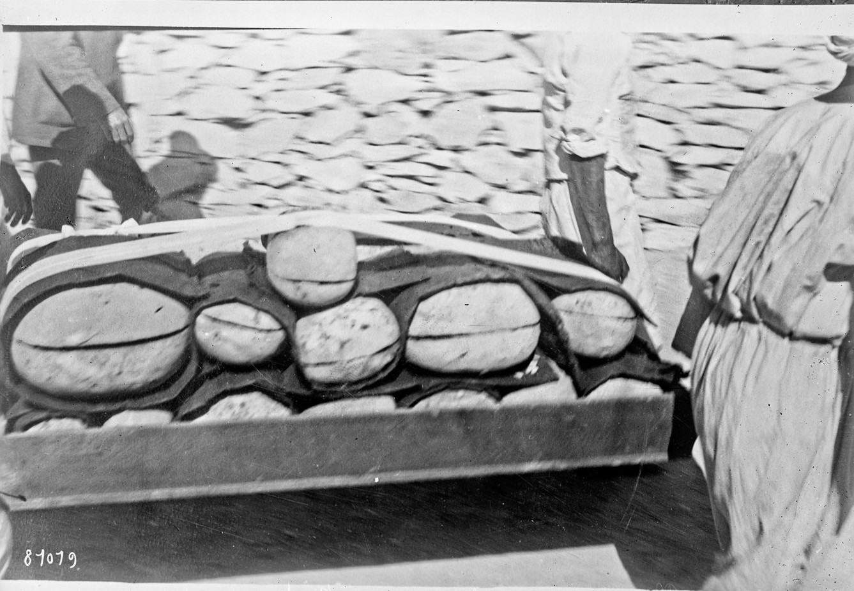 Овальные коробки, содержащие мумифицированные продукты