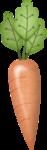 lliella_HHoppity_carrot.png