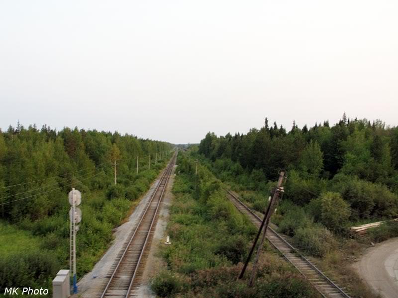 Вид с путепровода на железную дорогу Алапаевск - Серов