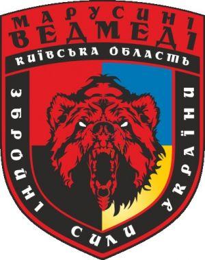 Обновление 11-го запасного батальона (Киевская область)