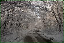 http://img-fotki.yandex.ru/get/25939/15842935.41b/0_f17fa_8ade0eb9_orig.jpg