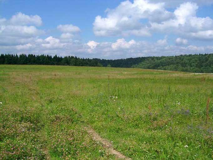 Мораторий на реализацию земель продлён