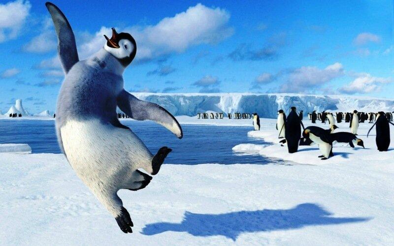 Легенда о поднимателе пингвинов