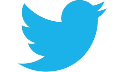 Социальная сеть Twitter может реализовать Vine вместо закрытия