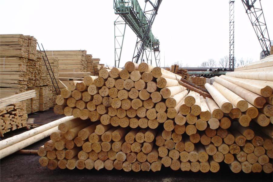 Аваков: ВРовенской области задержали всех начальников лесхозов