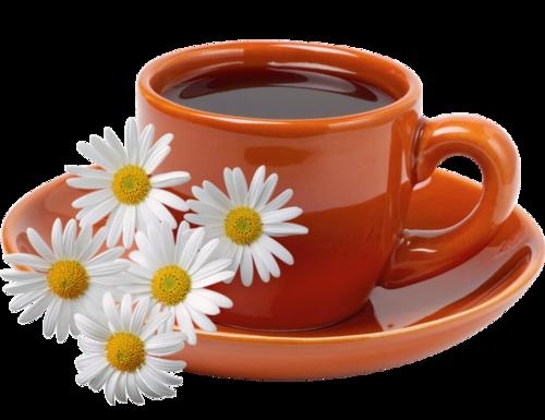 Чашка с чаем на прозрачном фоне