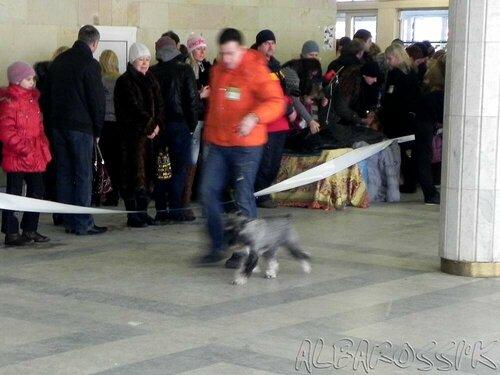 http://img-fotki.yandex.ru/get/26/10248733.f/0_ace07_c71bb173_L.jpg