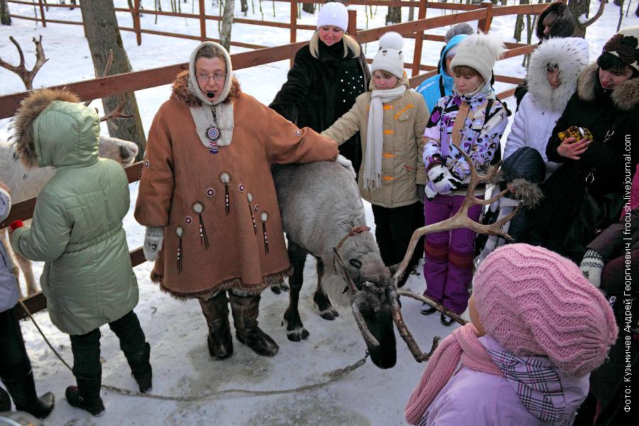экскурсовод на ферме северных оленей