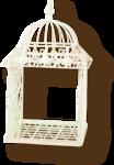 NLD EFY Cage sh.png