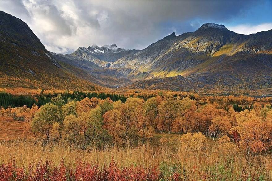 Фото дня. Осень в Норвегии и затопленный парк в Австрии 0 141924 7b70d30a orig