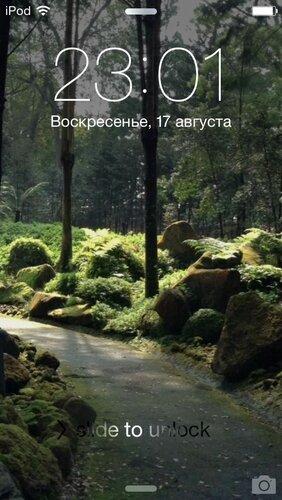 IMG_9214.jpg